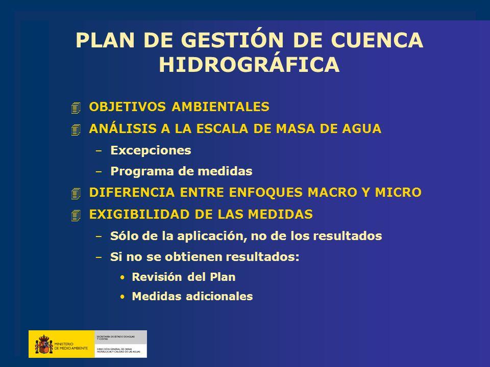 PLAN DE GESTIÓN DE CUENCA HIDROGRÁFICA 4OBJETIVOS AMBIENTALES 4ANÁLISIS A LA ESCALA DE MASA DE AGUA –Excepciones –Programa de medidas 4DIFERENCIA ENTR