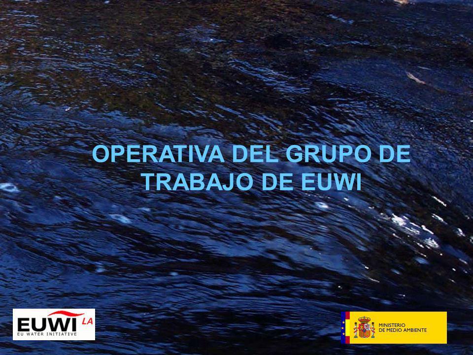OPERATIVA DEL GRUPO DE TRABAJO DE EUWI