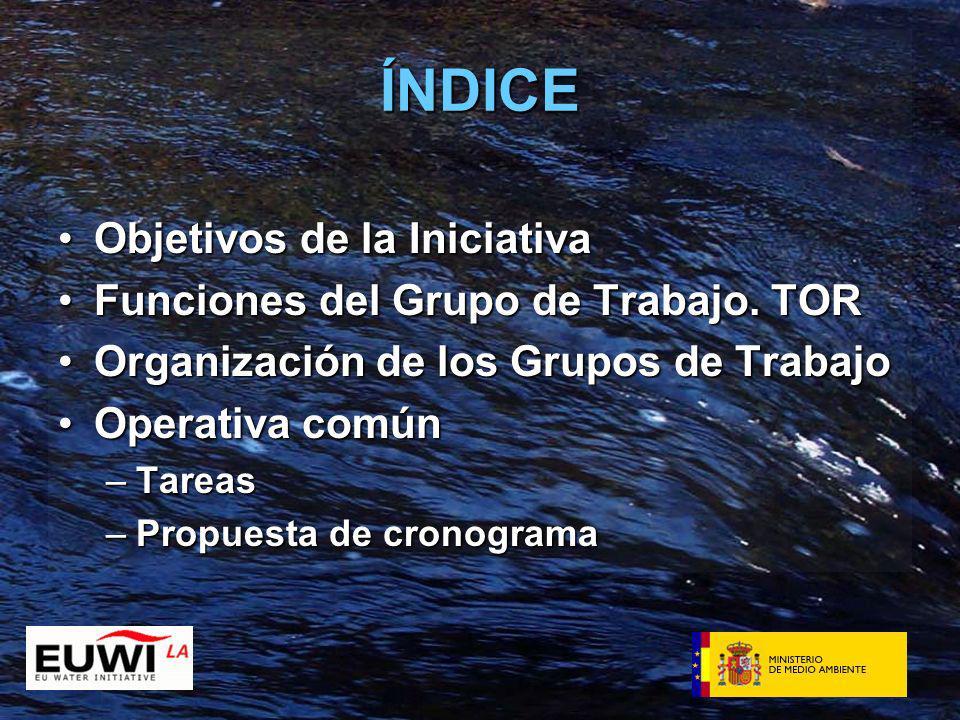 ÍNDICE Objetivos de la IniciativaObjetivos de la Iniciativa Funciones del Grupo de Trabajo.