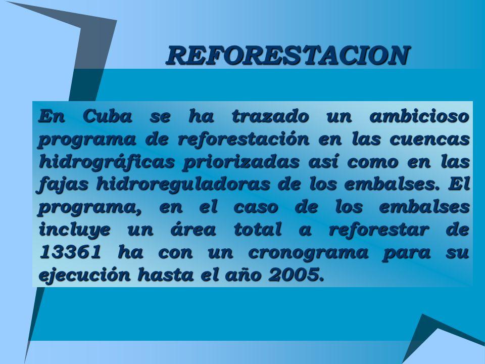 REFORESTACION En Cuba se ha trazado un ambicioso programa de reforestación en las cuencas hidrográficas priorizadas así como en las fajas hidroregulad