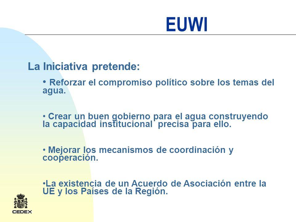 EUWI Componentes regionales: África EECCA ( Países de Europa del Este, Cáucaso y Asia Central) Región Mediterránea Latino América Componentes transversales: Investigación Seguimiento Incrementar la eficiencia de lUE en la ayuda al desarrollo
