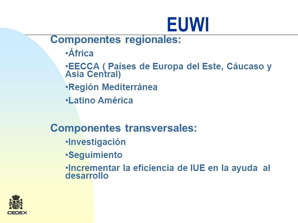 EUWI Categorías de actividades en cada país Actividades encaminadas a fortalecer la actividad institucional para avanzar hacia el desarrollo de planes de la gestión integral del recurso GIRHI Actividades a nivel de cuenca siempre enmarcadas dentro del GIRHI