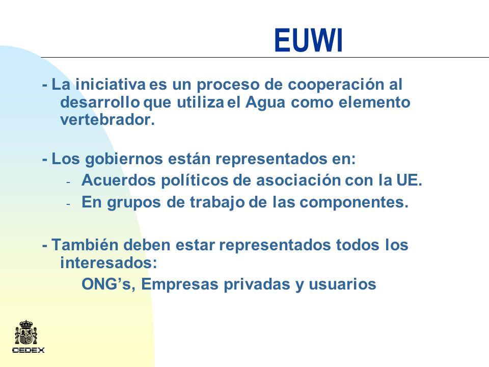 EUWI En la cumbre de Johannesburgo se establecieron las bases para incluir la componente latinoamericana en la Iniciativa Europea Fases: 1.- Lanzamiento de la Componente 2.- Preparación de programas 3.- Implantación de actuaciones 4.- Evaluación de los resultados