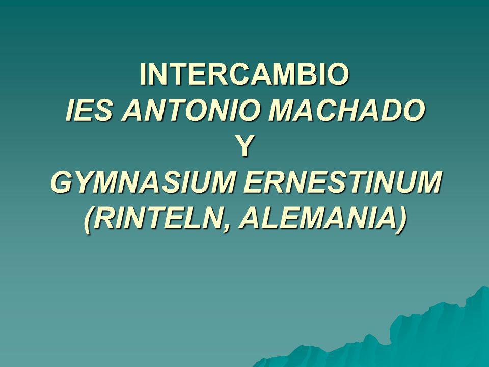 INTERCAMBIO IES ANTONIO MACHADO Y GYMNASIUM ERNESTINUM (RINTELN, ALEMANIA)