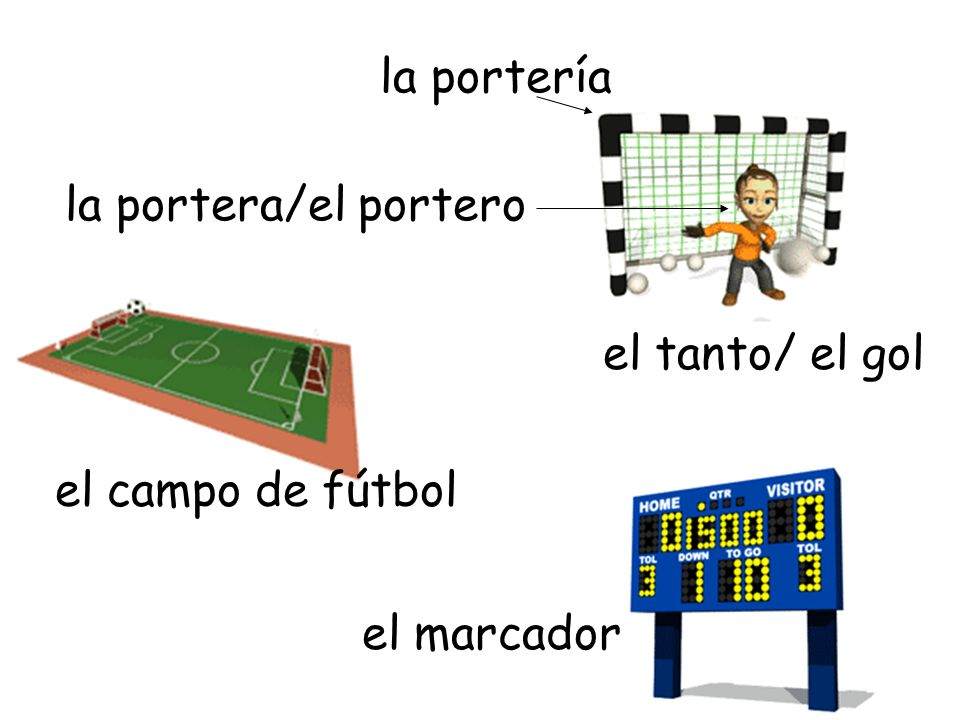 el campo de fútbol el marcador la portera/el portero el tanto/ el gol la portería