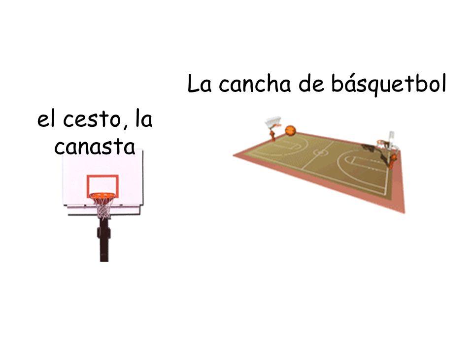 La cancha de básquetbol el cesto, la canasta