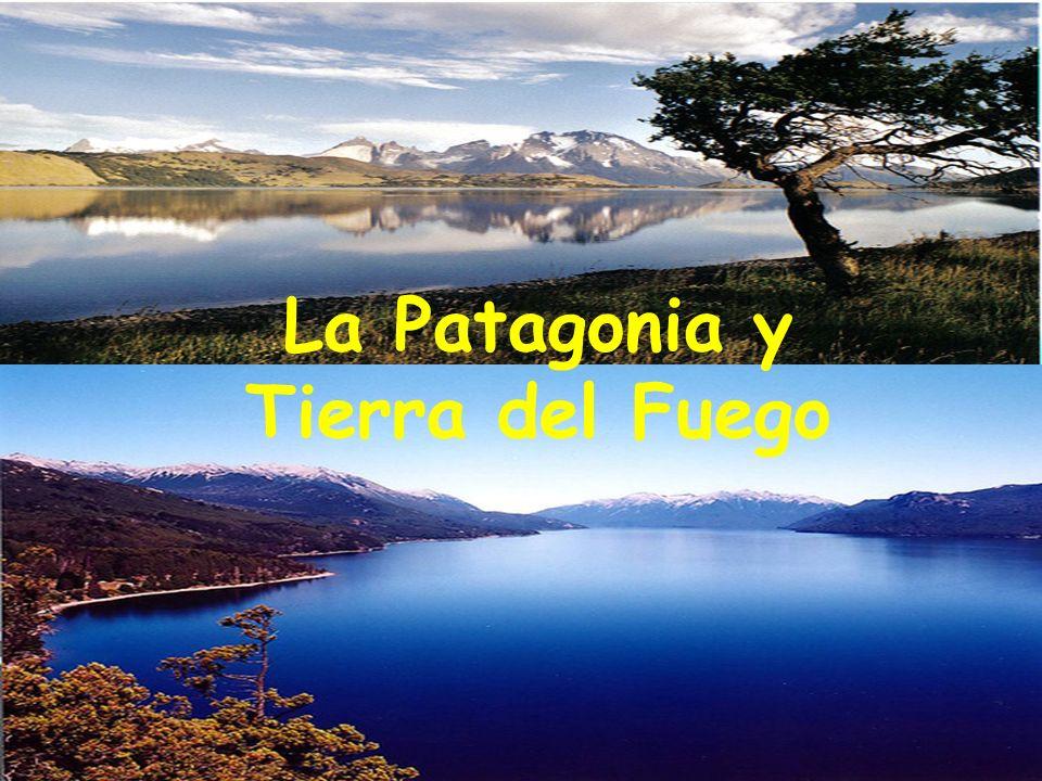 Información general: La Patagonia y Tierra del Fuego cubren el área más austral de Sudamérica Se encuentran en Argentina y Chile Muchos llaman este territorio: el fin del mundo Región marcada por: frecuentes vientos violentos clima tempestuoso y frío cielo frecuentemente nublado