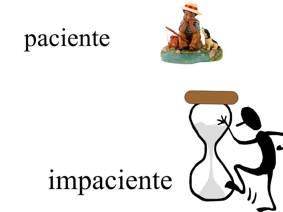 perezoso(a)