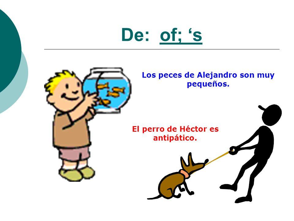De: of; s Los peces de Alejandro son muy pequeños. El perro de Héctor es antipático.