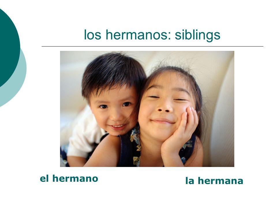 los hermanos: siblings el hermano la hermana