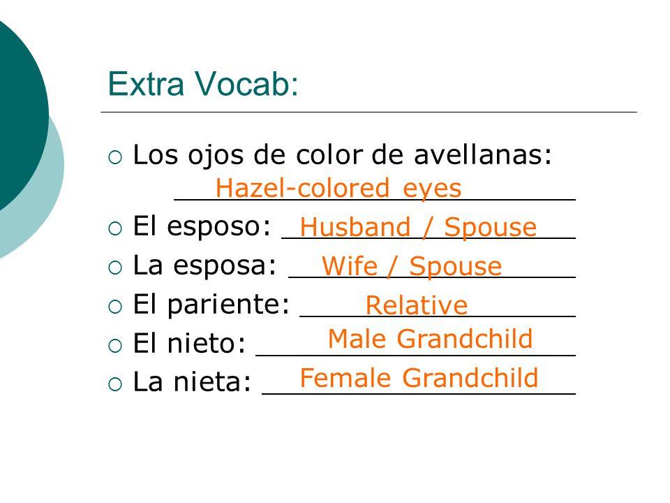 Extra Vocab: Los ojos de color de avellanas: El esposo: La esposa: El pariente: El nieto: La nieta: Hazel-colored eyes Husband / Spouse Wife / Spouse