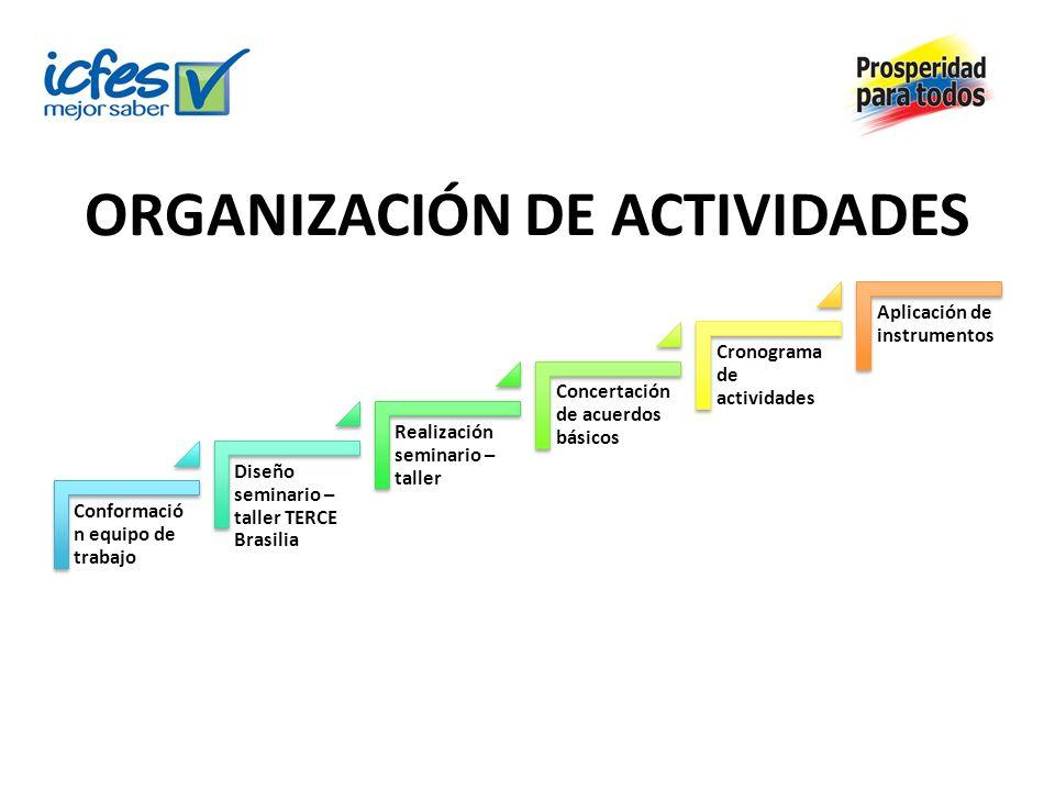 ORGANIZACIÓN DE ACTIVIDADES Conformació n equipo de trabajo Diseño seminario – taller TERCE Brasilia Realización seminario – taller Concertación de ac