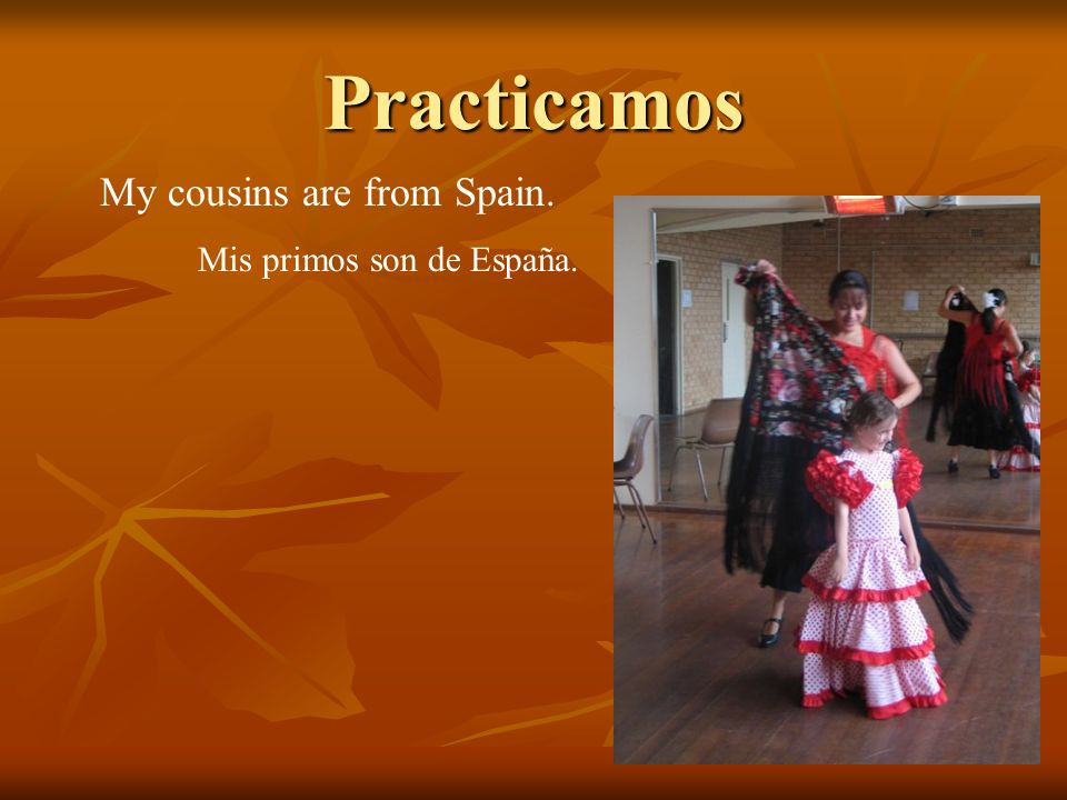 Practicamos My cousins are from Spain. Mis primos son de España.