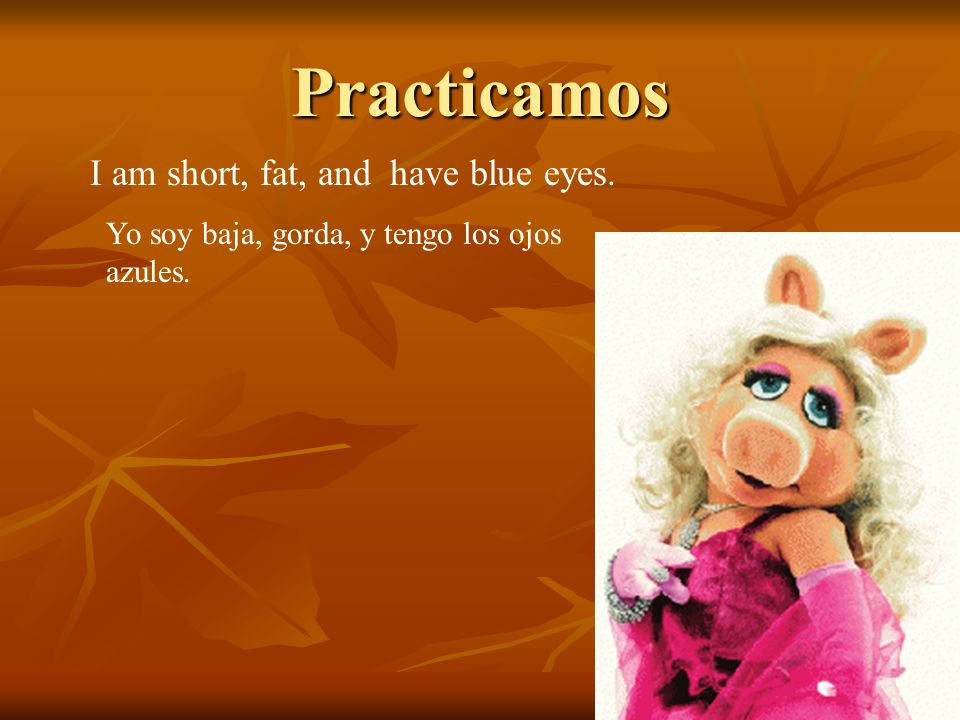 Practicamos I am short, fat, and have blue eyes. Yo soy baja, gorda, y tengo los ojos azules.