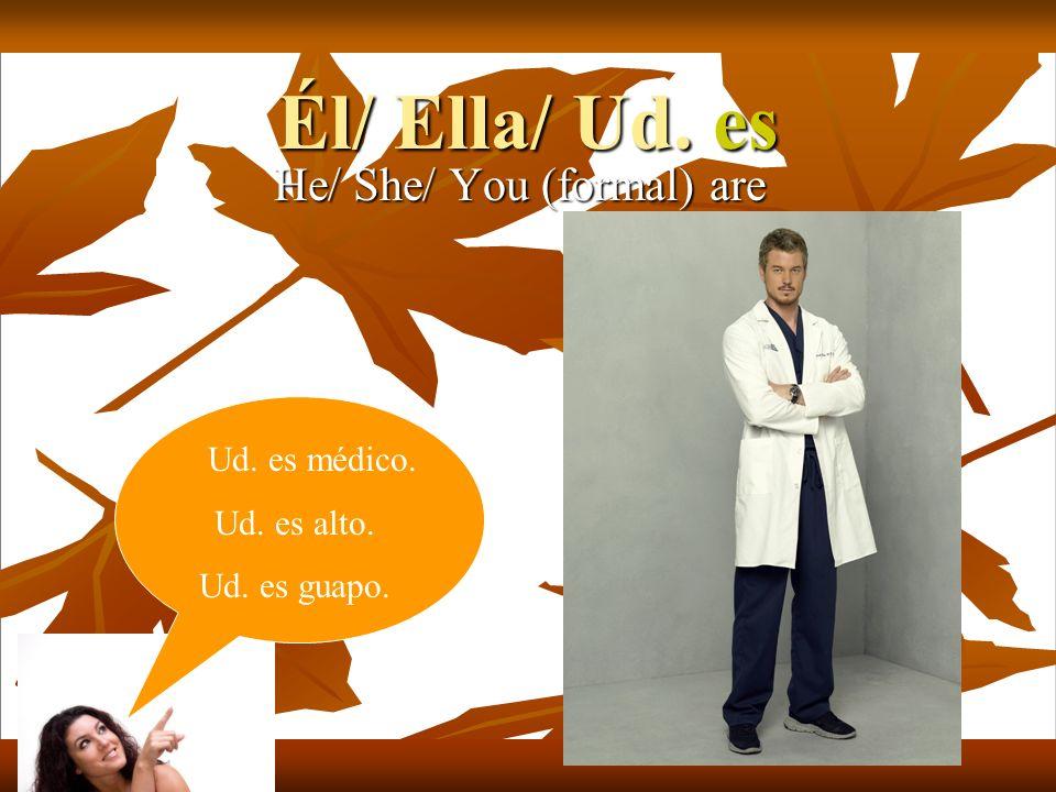 Él/ Ella/ Ud. es He/ She/ You (formal) are Ud. es médico. Ud. es alto. Ud. es guapo.