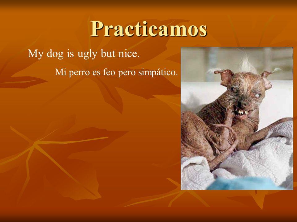 Practicamos My dog is ugly but nice. Mi perro es feo pero simpático.