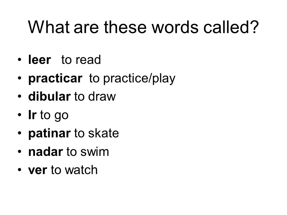 What are these words called? leer to read practicar to practice/play dibular to draw Ir to go patinar to skate nadar to swim ver to watch