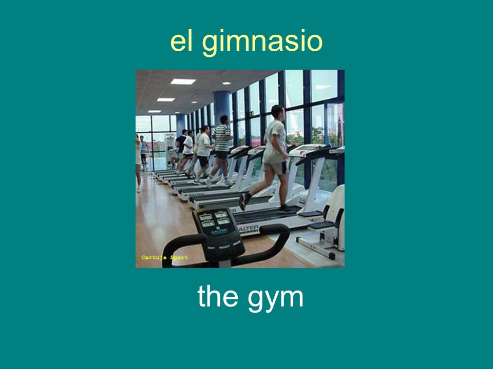el gimnasio the gym