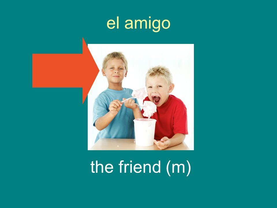 el amigo the friend (m)
