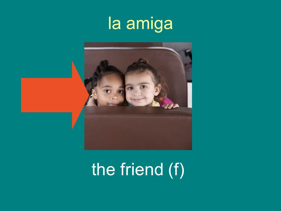 la amiga the friend (f)