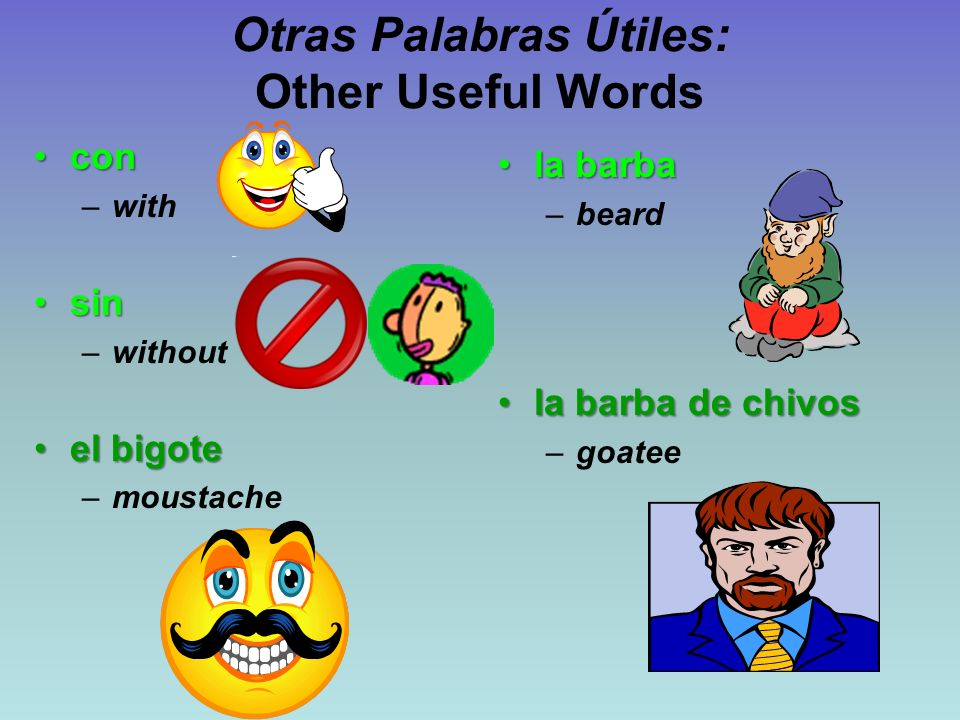 Otras Palabras Útiles: Other Useful Words concon –with sinsin –without el bigoteel bigote –moustache la barbala barba –beard la barba de chivosla barba de chivos –goatee
