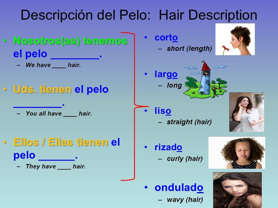 Descripción del Pelo: Hair Description Nosotros(as) tenemosNosotros(as) tenemos el pelo ________. –We have ____ hair. Uds. tienenUds. tienen el pelo _