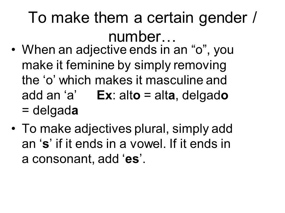 Examples: gordo = gordos fea = feas inteligente = inteligentes joven = jóvenes