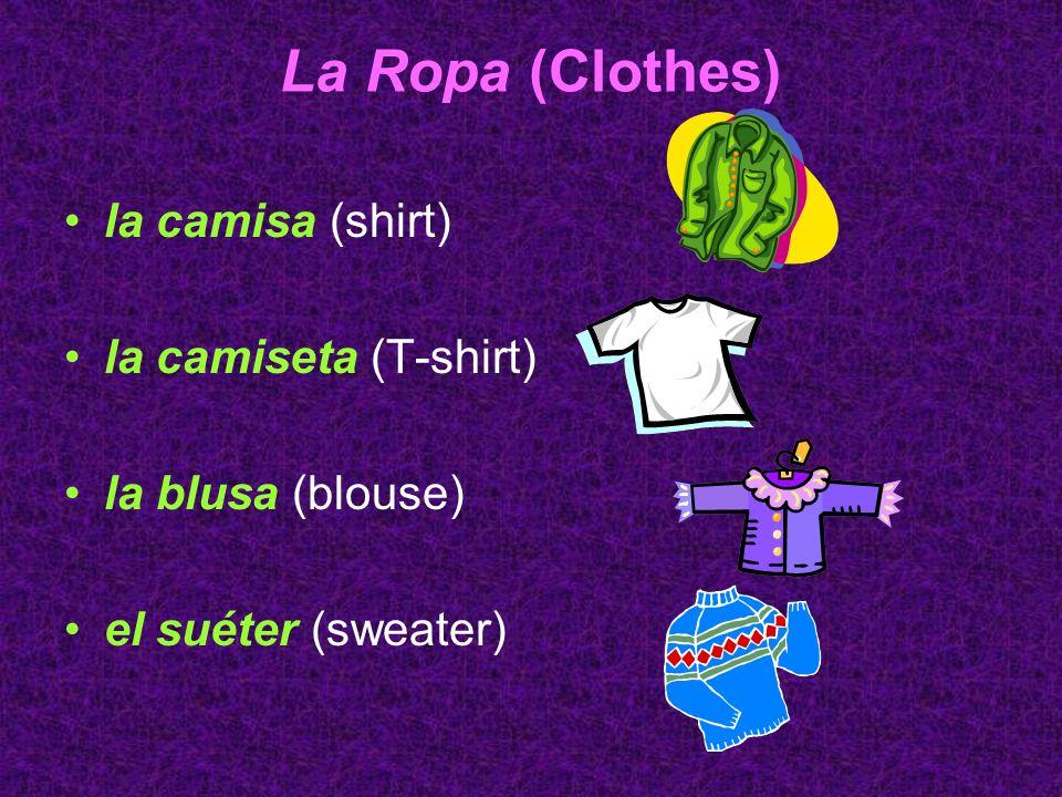 La Ropa (Clothes) la camisa (shirt) la camiseta (T-shirt) la blusa (blouse) el suéter (sweater)