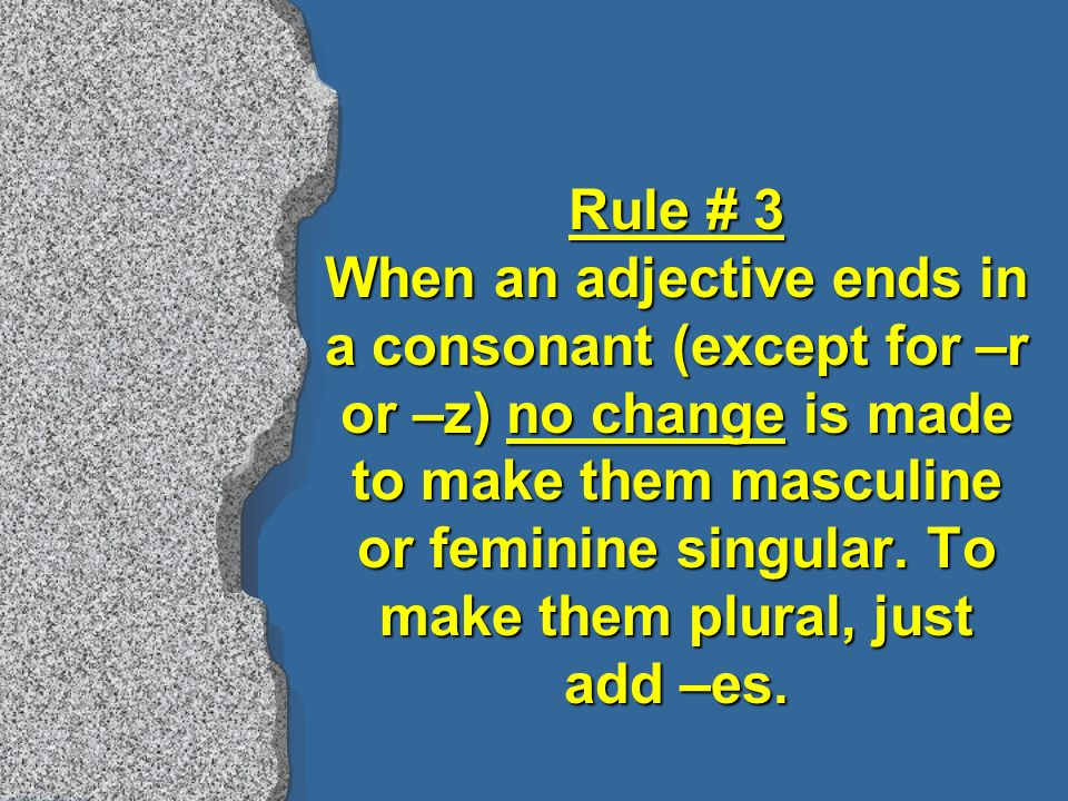 Rule # 3 When an adjective ends in a consonant (except for –r or –z) no change is made to make them masculine or feminine singular.