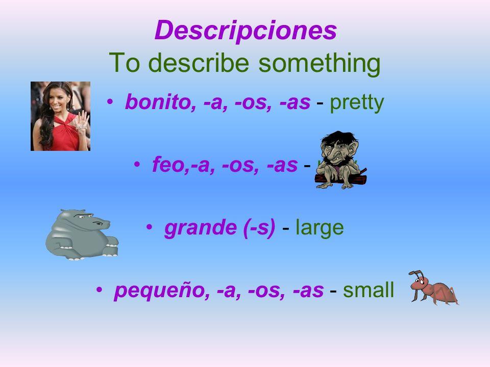 Descripciones To describe something bonito, -a, -os, -as - pretty feo,-a, -os, -as - ugly grande (-s) - large pequeño, -a, -os, -as - small