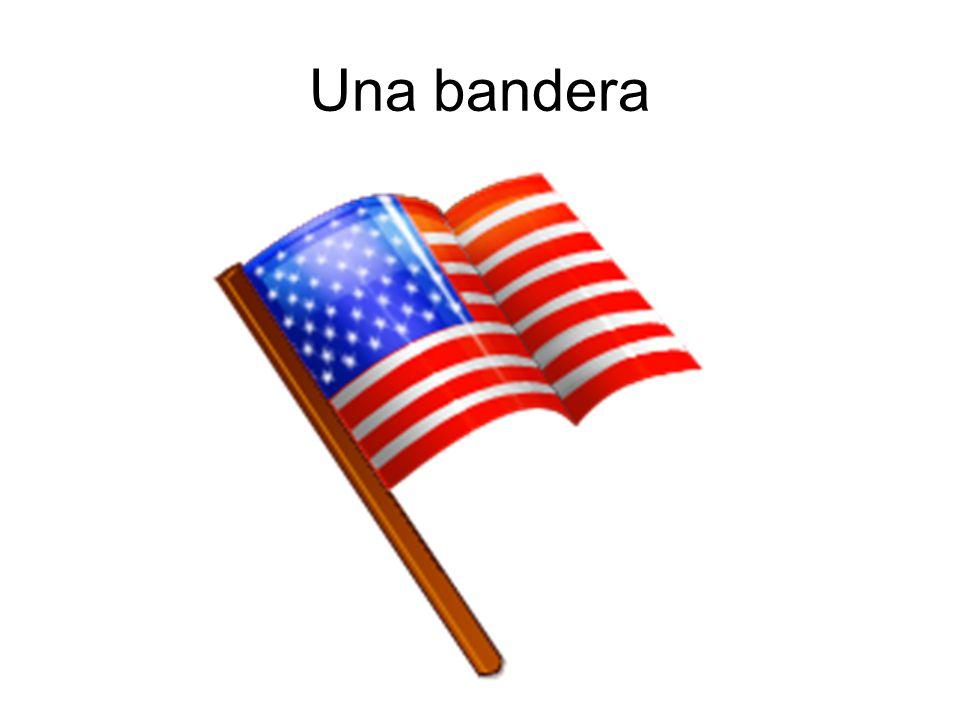 Una bandera