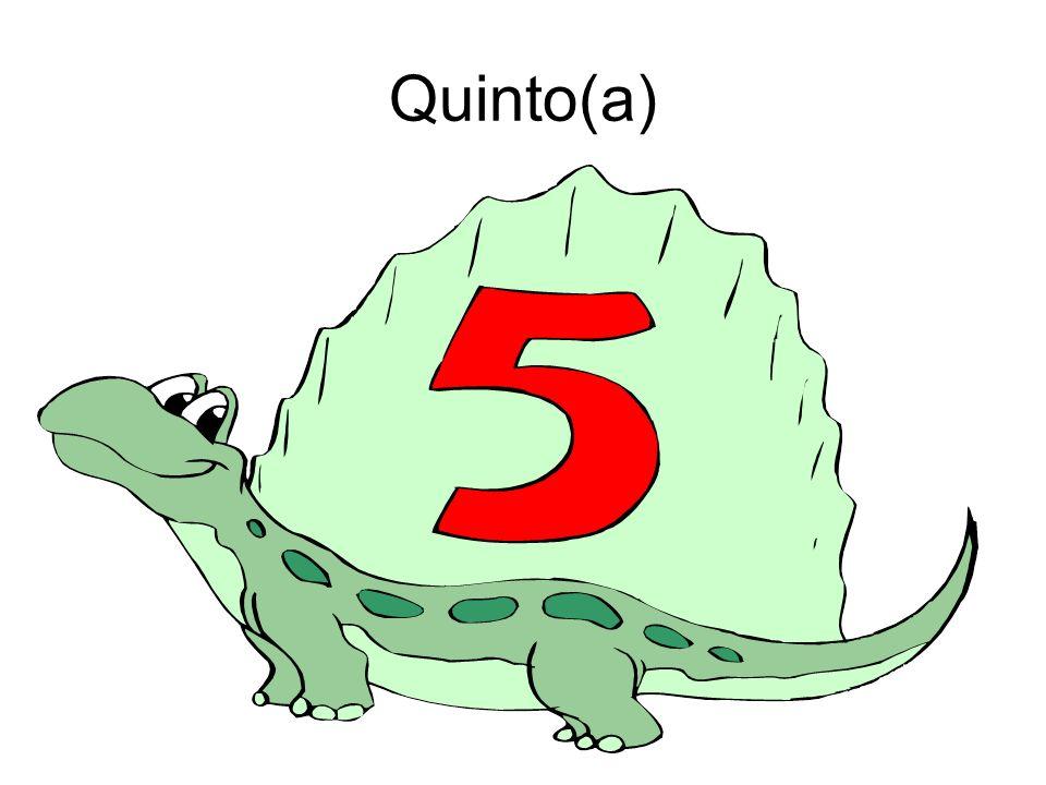Quinto(a)