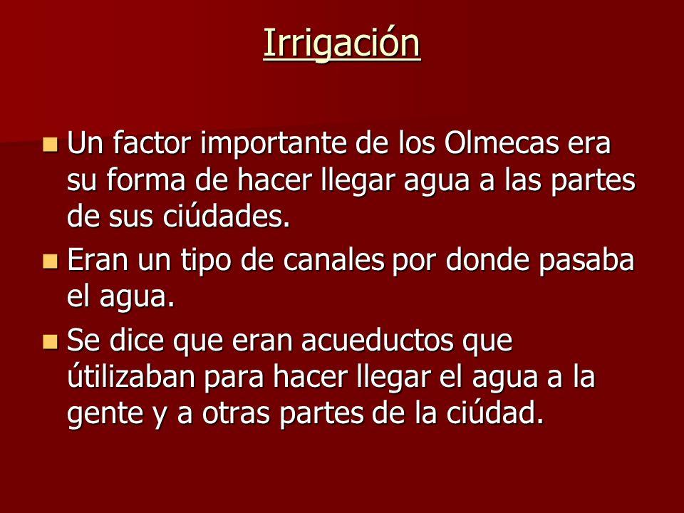 Irrigación Un factor importante de los Olmecas era su forma de hacer llegar agua a las partes de sus ciúdades. Un factor importante de los Olmecas era