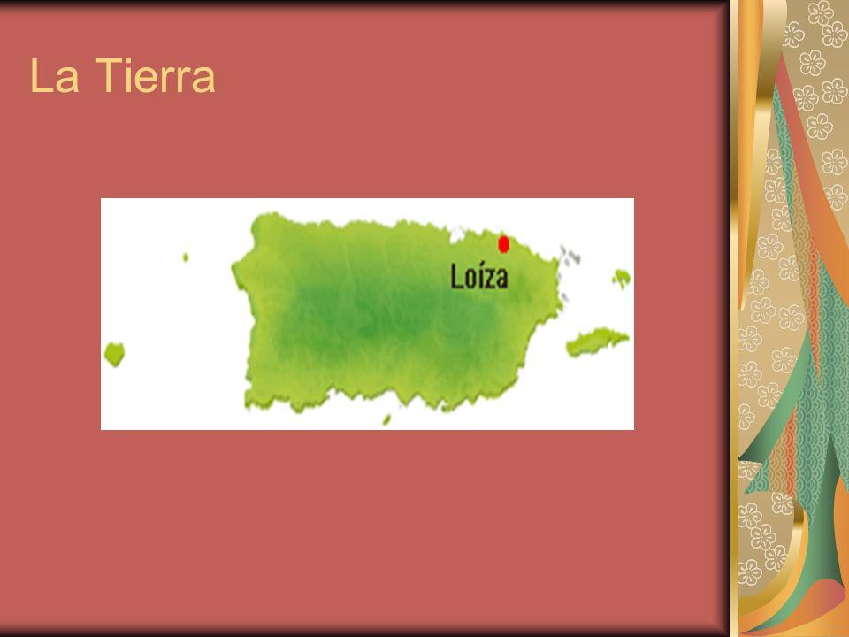 La Tierra de Loíza Loíza se localiza en la costa del noreste, al norte de Canóvanas; el este de Carolina; y el oeste de Grande de Río.