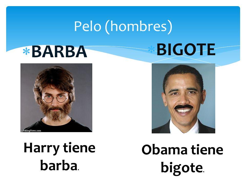 Pelo (hombres) BARBA BIGOTE Harry tiene barba. Obama tiene bigote.