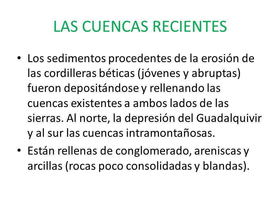LOS VALLES FLUVIALES Y LAS VEGAS Son los valles medio y bajo del Guadalquivir (mayor llanura fluvial de España) y una serie de cuencas de fondo plano como las vegas de Antequera y Granada.