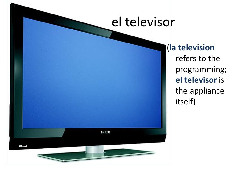 el televisor (la television refers to the programming; el televisor is the appliance itself)