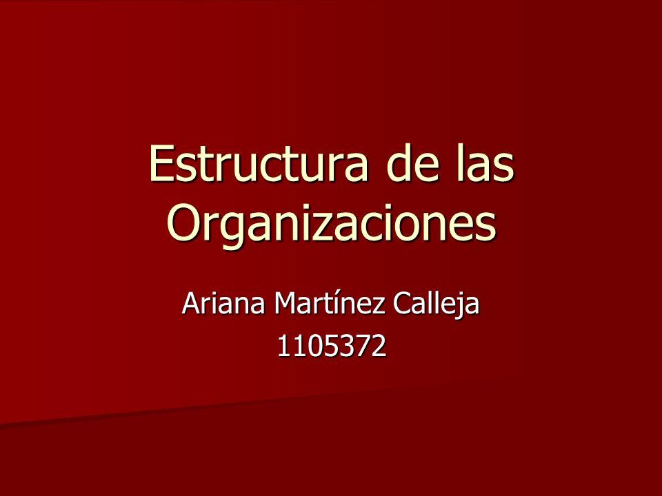 Estructura de las Organizaciones Ariana Martínez Calleja 1105372