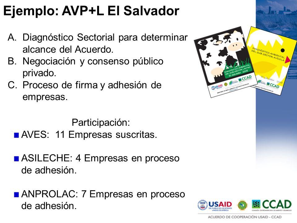 Ejemplo: AVP+L El Salvador A.Diagnóstico Sectorial para determinar alcance del Acuerdo. B.Negociación y consenso público privado. C.Proceso de firma y