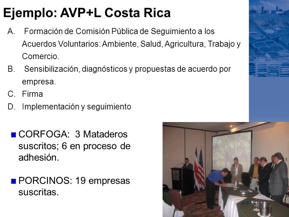 Ejemplo: AVP+L Costa Rica A. Formación de Comisión Pública de Seguimiento a los Acuerdos Voluntarios: Ambiente, Salud, Agricultura, Trabajo y Comercio