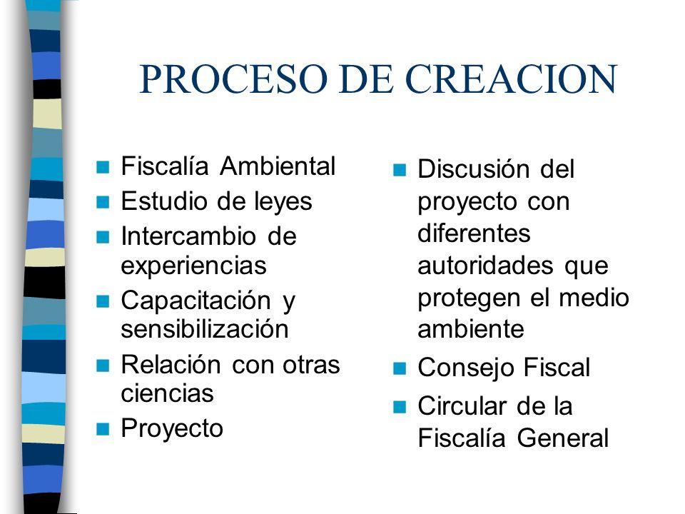 PROCESO DE CREACION Fiscalía Ambiental Estudio de leyes Intercambio de experiencias Capacitación y sensibilización Relación con otras ciencias Proyect