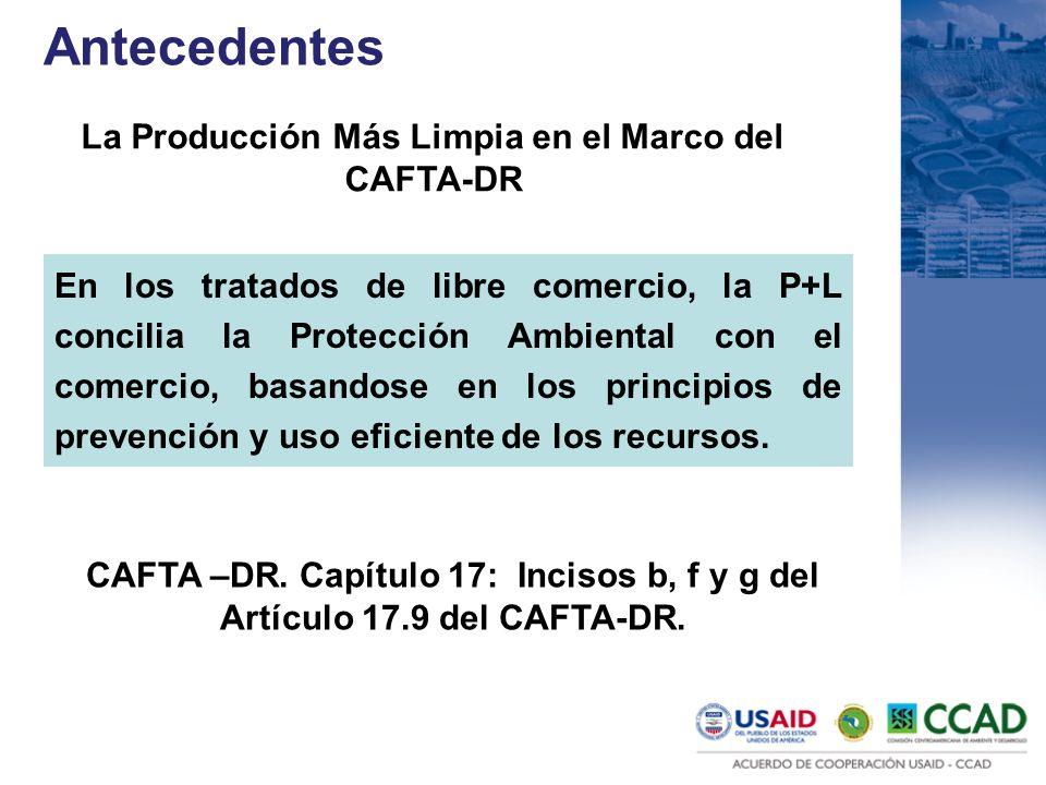 La Producción Más Limpia en el Marco del CAFTA-DR En los tratados de libre comercio, la P+L concilia la Protección Ambiental con el comercio, basandos