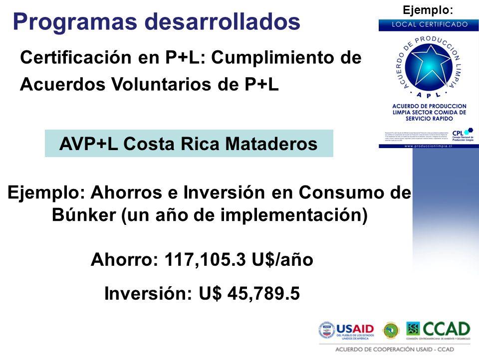 Programas desarrollados Certificación en P+L: Cumplimiento de Acuerdos Voluntarios de P+L Ejemplo: AVP+L Costa Rica Mataderos Ejemplo: Ahorros e Inver