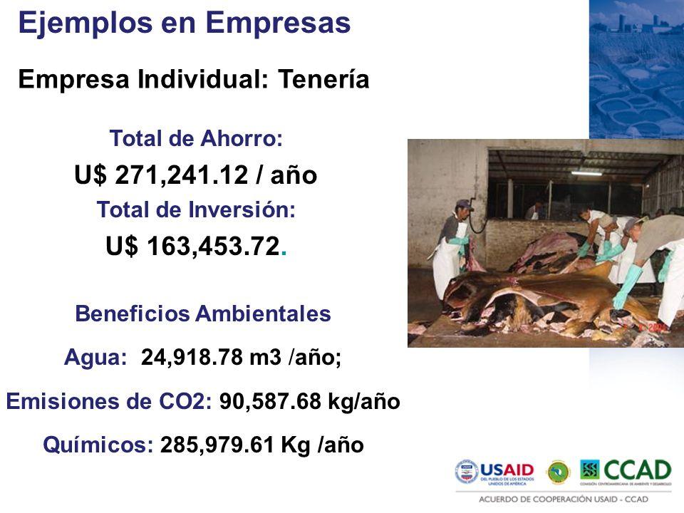 Ejemplos en Empresas Empresa Individual: Tenería Total de Ahorro: U$ 271,241.12 / año Total de Inversión: U$ 163,453.72. Beneficios Ambientales Agua: