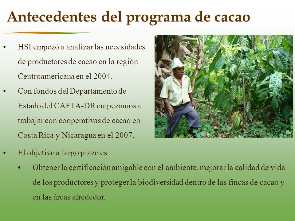 HSI empezó a analizar las necesidades de productores de cacao en la región Centroamericana en el 2004.