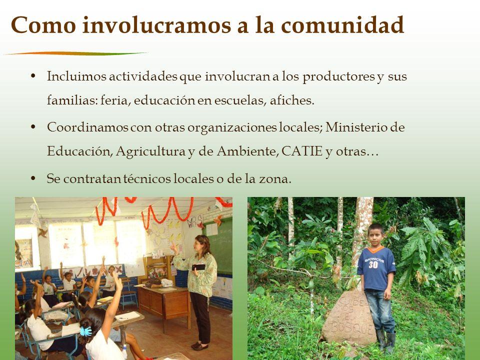 Aprendizajes Importante trabajar con organizaciones locales estables.