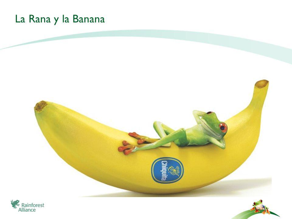 La Rana y la Banana