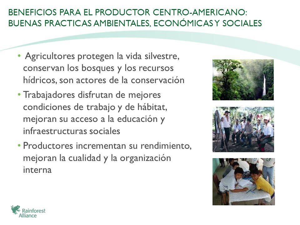 BENEFICIOS PARA EL PRODUCTOR CENTRO-AMERICANO: BUENAS PRACTICAS AMBIENTALES, ECONÓMICAS Y SOCIALES Agricultores protegen la vida silvestre, conservan