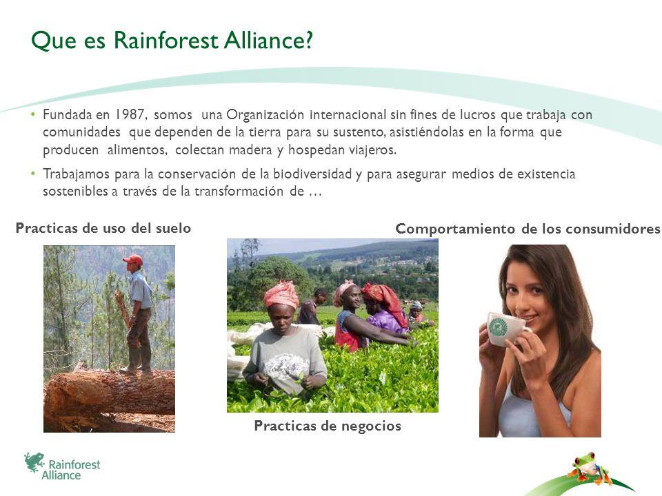Que es Rainforest Alliance? Fundada en 1987, somos una Organización internacional sin fines de lucros que trabaja con comunidades que dependen de la t