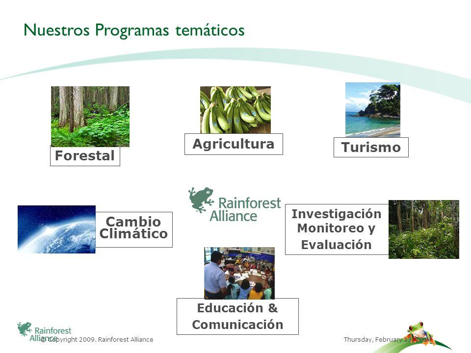 -Agricultura Primer Estándar para la Agricultura Sostenible creado en 1993 Establecimiento de la Red de Agricultura Sostenible (RAS) 463 mil hectáreas certificadas en 26 Países, casi 40,000 operaciones y más de 20 cultivos Mejora de las condiciones de vida de millones de productores y trabajadores rurales 2+% del café a nivel mundial ($700M ventas) 3% del té mundial ($1000 M ventas) 15% de las bananas mundiales ($700M ventas) -Forestal Primer Certificador mundial de tierras forestales Certificación según los estándares del Forest Stewardship Council 54 millones de hectáreas certificadas (46% FSC) en 65 Países Nuestros Programas principales